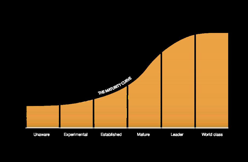 Digital Maturity Curve.png
